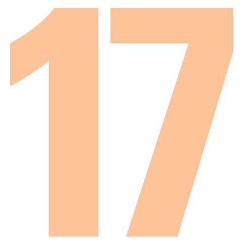 17 by Abby Aguilar