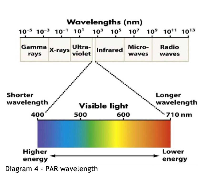 PAR wavelength graph