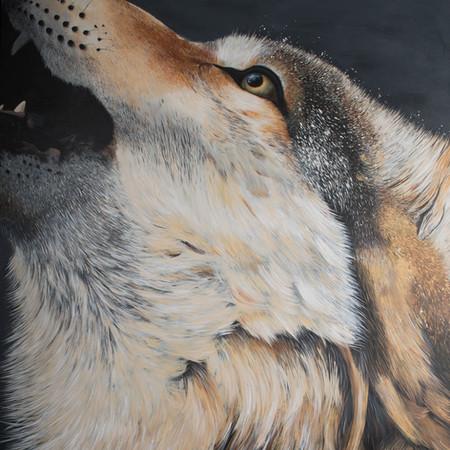 Greywolf Golf Course Series - Wolf Howl