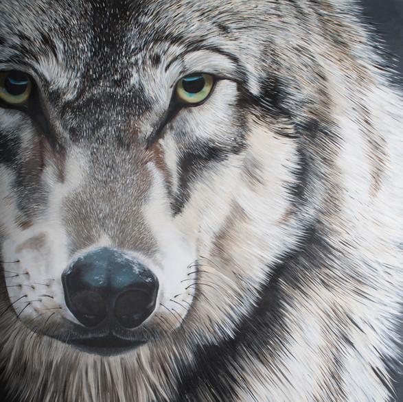 Greywolf Golf Course Series - Domo Wolf Spirit