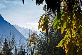 Jungfrau mountain