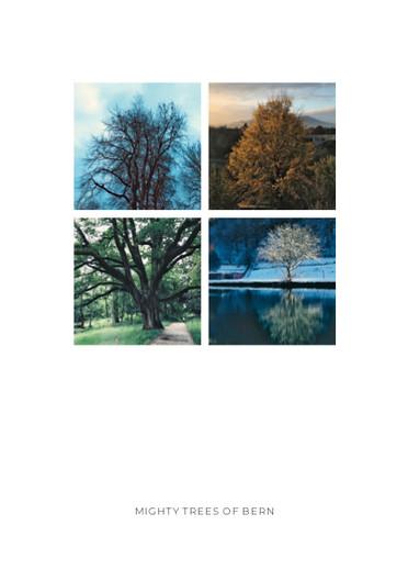 MIGHTY TREES