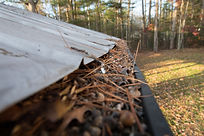 Gutters full of debris needing to be cle