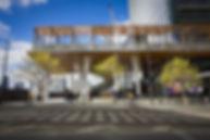Edward Roydhouse Image.jpg