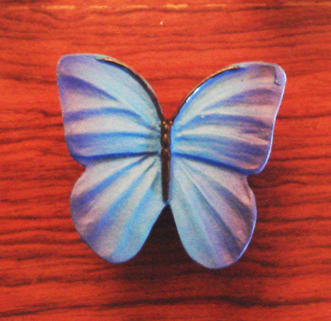 Πεταλούδα γαλάζια