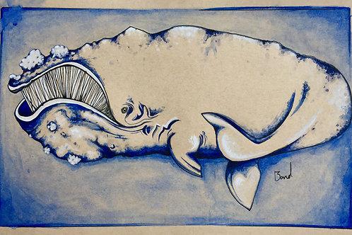 Nisshin Maru (croquis)