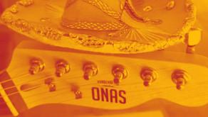 CABRONES! GUITARRAS DESTINO MEXICO BUEY!