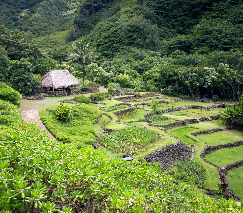 Limahuli Garden & Preserve, Kauai
