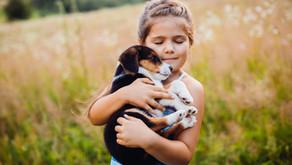 Como ajudar seu filho a ter empatia? Confira 5 dicas com o CCA