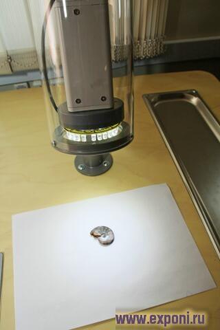 Video_Microscope__Sc_1518_3.jpg