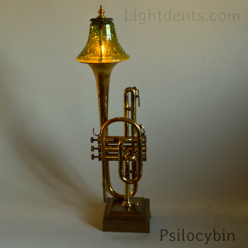 Vintage cornet. On/Off switch in the second valve.