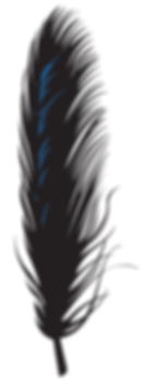 feather-long-blue.png