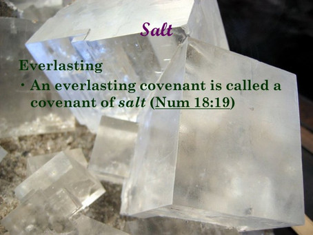 True Word of Yah: Salt, Covenant of Salt, and being Salt of the World. What does Salt Mean?