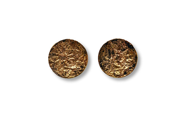 Steel and Gold Earrings