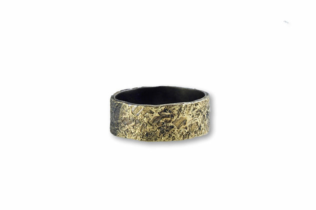 Steel and 20K Gold Band