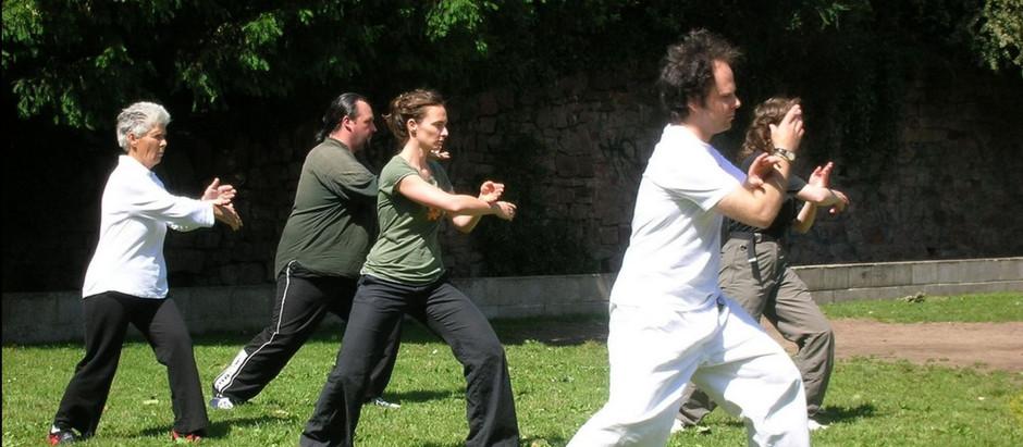 Reprise des cours de Qi Gong