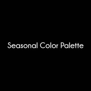 Seasonal Color Palette black.jpg