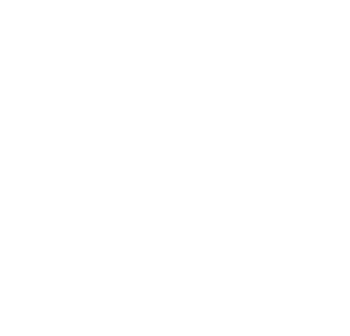 Mechanical Great White Shark