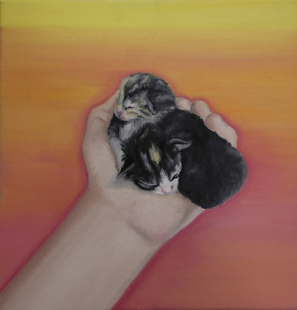Sleeping Kittens Oil Painting by Miranda Leighr