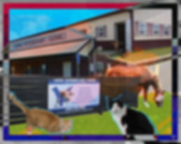 Long Veterinary Clinic Collage
