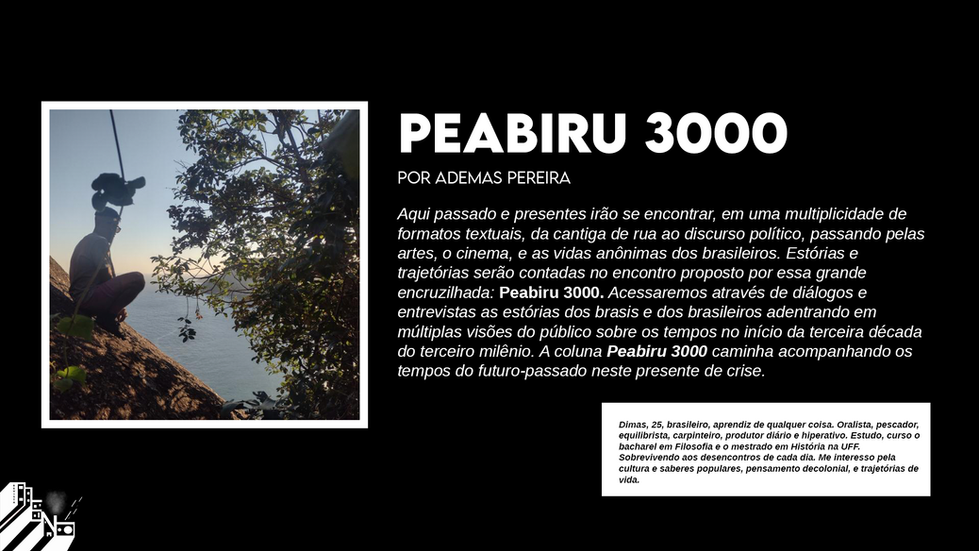 Piabirt 300.png