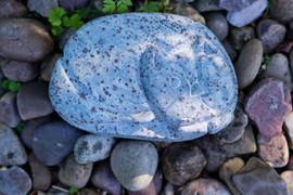 Stone cat.jpg