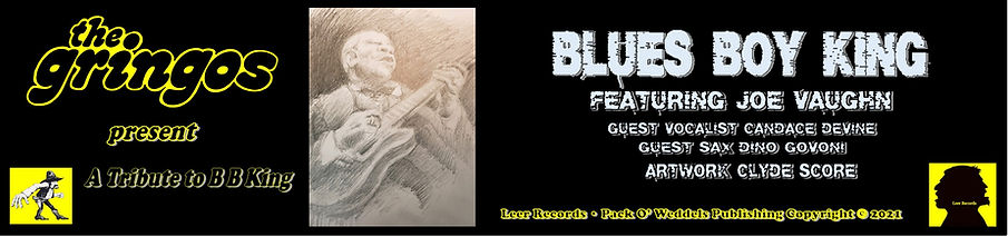 Banner Blues Boy 3a.jpg