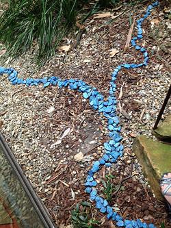 Peradam Projects : Blue rocks