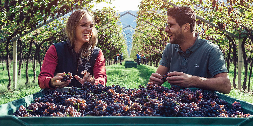 Wine Pairing Dinner with winemaker Ines from Castelfeder in Alto Adige