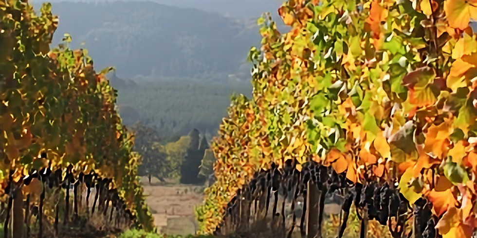 Bird & Jim is happy to welcome Antiquum Wines in a pairing dinner June 11th at 7:00 PM
