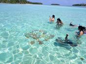San Blas Day Tour guests snorkeling at Natural Pools