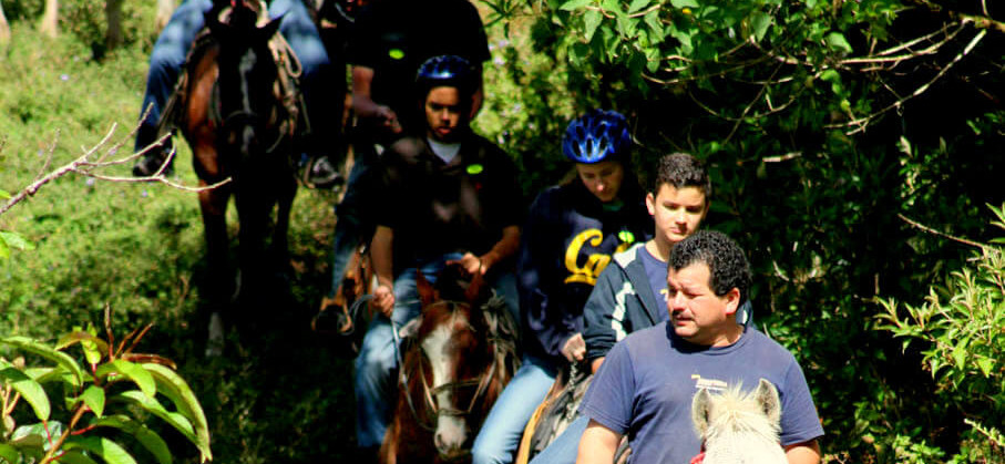 Monteverde Costa Rica guided Horseback riding tour on forest trail with guide and guests