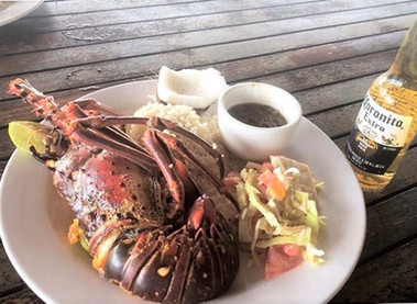 Optional Lobster lunch San Blas Tour