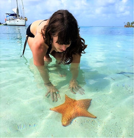 San Blas Day Tour guest looking at a sea star in shallow ocean water