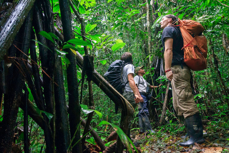 A Darien Gap expedition group listening to tour guide explain flora and fauna