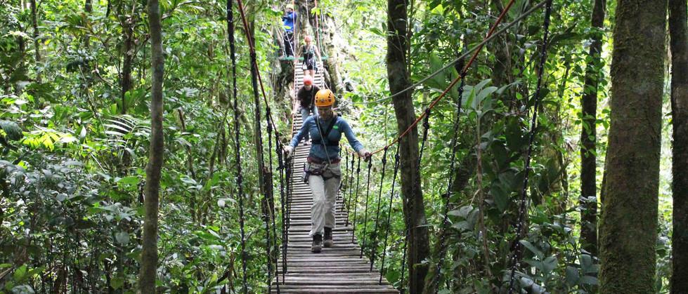 Monteverde Costa Rica zipline adventure guests walking along wooden bridge