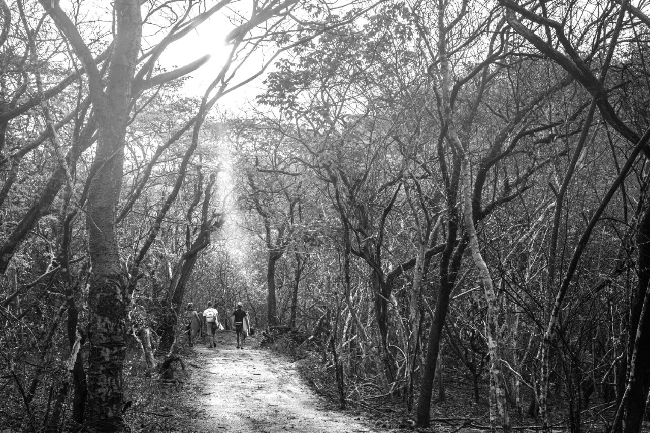 Salina Cruz Surf Camp guests hiking through the forest to another perfect wave