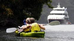Panama adventure cruise guests kayak
