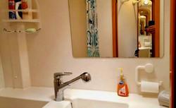 Salina 48 head bathroom sink mirror