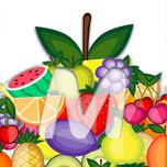 Menoc logotype.png