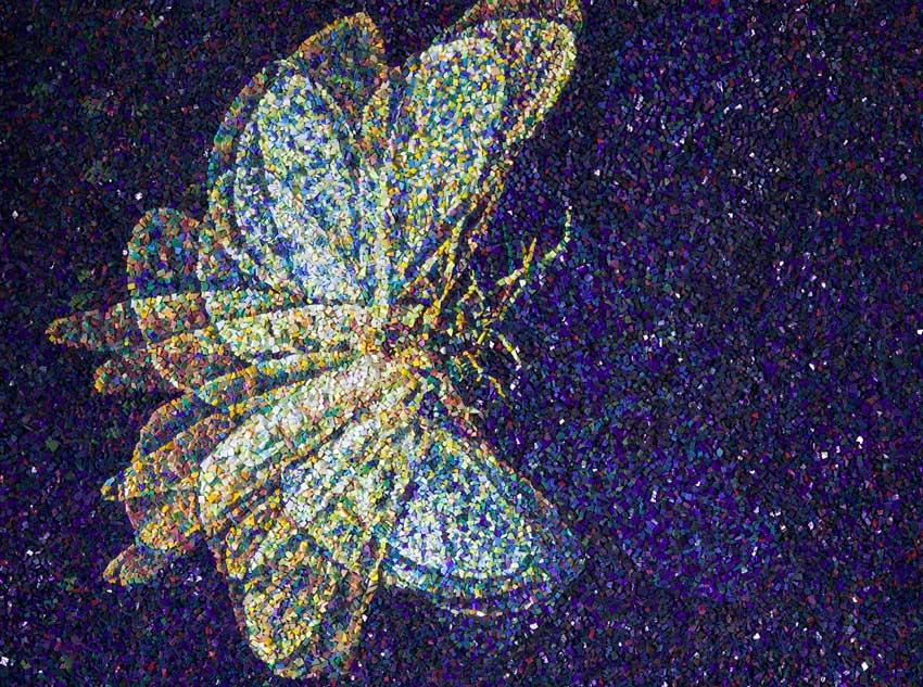 Falena (Moth)