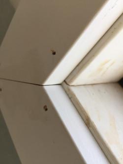 holes requiring putty