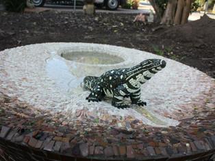 Lizard Pond Somers