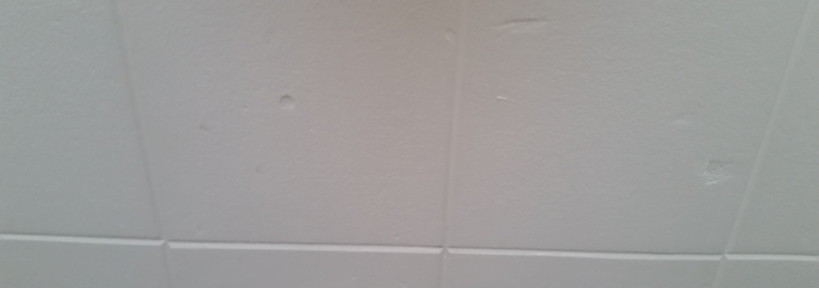 Small Bedroom Ceiling