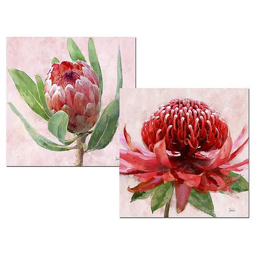Tableaux fleurs - Sélection Touzeau