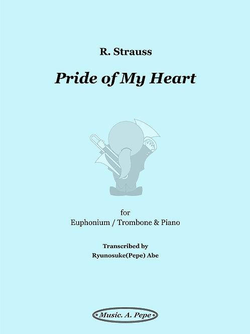 お前、私の心のかわいい冠を (R.Strauss) / Pride of My Heart