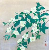 PO-019 Teruko Okamoto.JPG