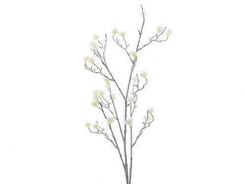 Rama mini plume green/white