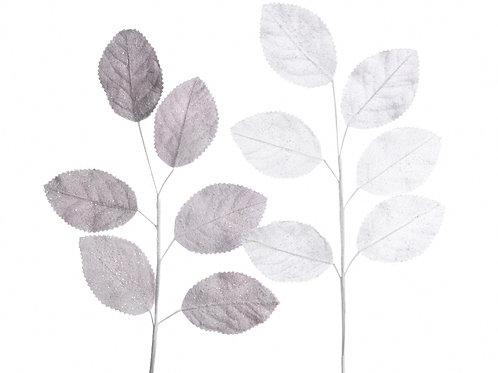 Rama leaf con nieve