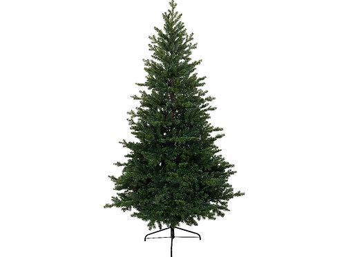 Árbol Allison pine